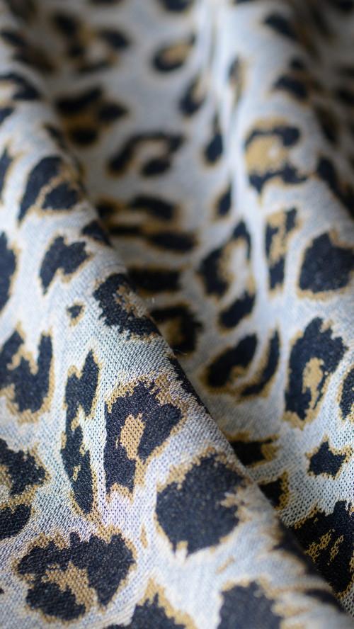 The Wild Leopard